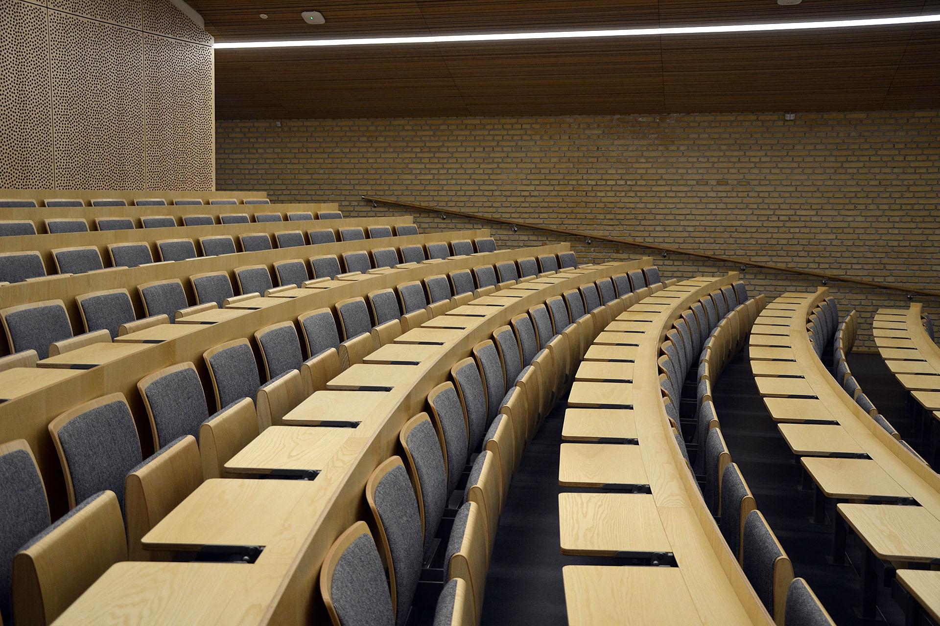 DK Aarhus IAS ARC WOOD 48 web